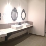 Panoramic Picture Of The Spa Inspired Women's Washroom